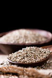 Portion of Hemp Seeds Royalty Free Stock Images