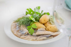 Portion of herring fish fillets with potato Royalty Free Stock Image