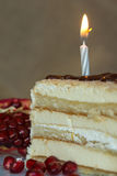 Portion homemade cream cake with candle and pomegranate seeds and chocolate spread Royalty Free Stock Photo