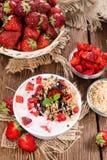 Portion of homemade Strawberry Yogurt Royalty Free Stock Image