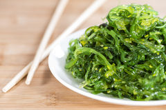 Portion of Kelp Salad Royalty Free Stock Photos