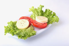 Portion of Mozzarella with Tomatoes, lettuce leaf and Balsamic dressing on white plate. selective focus close-up shot. Portion of Mozzarella with Tomatoes Royalty Free Stock Photos
