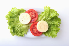 Portion of Mozzarella with Tomatoes, lettuce leaf and Balsamic dressing on white plate. selective focus close-up shot. Portion of Mozzarella with Tomatoes Royalty Free Stock Photo
