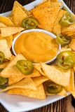 Portion of Nachos (with Cheese Dip) Stock Images