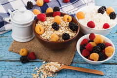 Portion of oatmeal in the bowl with berries Royalty Free Stock Photos
