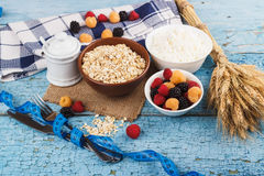 Portion of oatmeal in the bowl with berries Royalty Free Stock Image