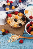 Portion of oatmeal in the bowl with berries Stock Images