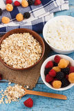 Portion of oatmeal in the bowl with berries Stock Photos