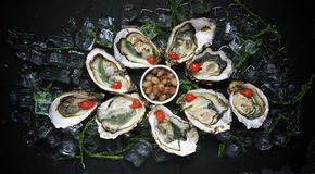 Portion of oysters