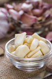 Portion of peeled Garlic Stock Images