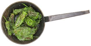 Pimientos de Padron isolated on white background Royalty Free Stock Photography