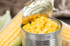Portion of preserved Sweetcorn Royalty Free Stock Images