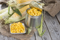 Portion of preserved Sweetcorn Royalty Free Stock Image