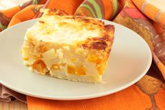 Portion of pumpkin casserole Royalty Free Stock Images