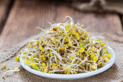 Portion of Radish Sprouts. Some fresh Radish Sprouts on rustic wooden background Royalty Free Stock Photos