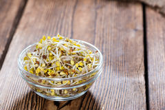 Portion of Radish Sprouts. Some fresh Radish Sprouts on rustic wooden background Stock Photo