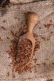 Portion of Red Rice Stock Photography