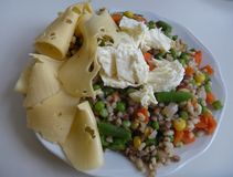 Portion of rice vegetable salad with cheese. A portion of rice vegetable salad with cheese Royalty Free Stock Photo