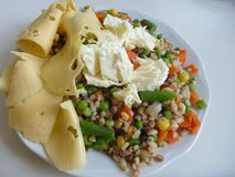 Portion of rice vegetable salad with cheese. A portion of rice vegetable salad with cheese Stock Photo