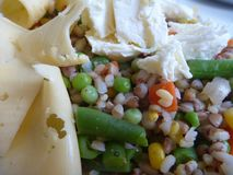 Portion of rice vegetable salad with cheese. A portion of rice vegetable salad with cheese Stock Images