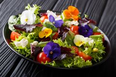 Portion of salad with edible flowers with fresh lettuce, spinach. Tomatoes and cheese close-up on a plate. horizontal royalty free stock photo