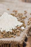 Portion of Spelt Flour (close-up shot) Royalty Free Stock Photo