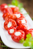 Portion of Stuffed Bell Pepper. Homemade Filled Pimientos on vintage background & x28;selective focus; close-up shot& x29 Stock Image