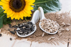 Portion of Sunflower Seeds Stock Images