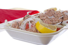 Portion of tuna salad Royalty Free Stock Image