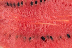 Portion of Watermelon with isolated background Royalty Free Stock Image