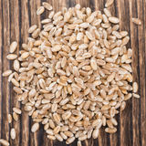 Portion of Wheat Grains Stock Photography
