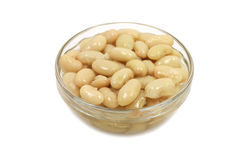 Portion of white beans in a glass cup Royalty Free Stock Photography