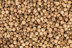 Portion of White Pepper Royalty Free Stock Photography