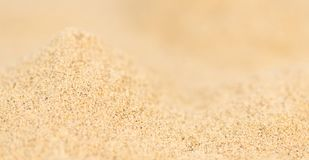 Portion of White Pepper Royalty Free Stock Image