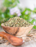 Portion of Winter Savory Royalty Free Stock Photo
