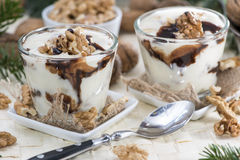 Portion of Yoghurt royalty free stock image