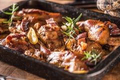 Portioned испек кролика в лотке с розмариновым маслом и соусом лука стоковые фото
