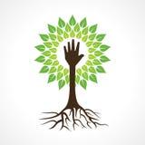 Portionhanden gör trädet Fotografering för Bildbyråer