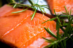 Portions of Fresh Raw Salmon Fillets with Aromatic Herbs and Oli. Portions of Fresh Raw Salmon Fillets with Aromatic Herbs and Spices and Olive Oil , Closeup Royalty Free Stock Photo