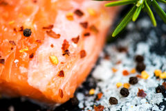 Portions of Fresh Raw Salmon Fillets with Aromatic Herbs and Oli Royalty Free Stock Photography