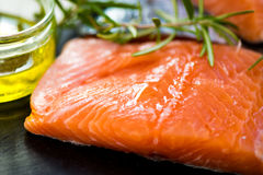 Portions of Fresh Raw Salmon Fillets with Aromatic Herbs and Oli Royalty Free Stock Photos