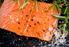 Portions of Fresh Raw Salmon Fillets with Aromatic Herbs and Oli Royalty Free Stock Photo
