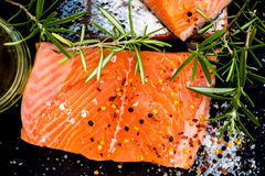 Portions of Fresh Raw Salmon Fillets with Aromatic Herbs and Oli Stock Photography