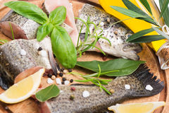 Portions of raw trout fish. Fillets of fresh raw fish with herbs and spices on a kitchen board. Close up, soft focus Stock Photo