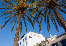Portixol hotel and date palm trees Royalty Free Stock Image