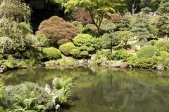 Portland Japanese garden Royalty Free Stock Images