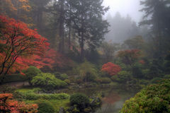 Portland Japanese Garden in the Fall. Reflection Pond in Portland Japanese Garden in the Fall on foggy morning Royalty Free Stock Images