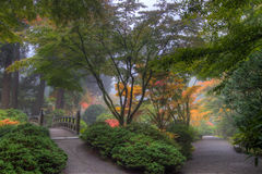 Portland Japanese Garden in Fall. Fall Colors at Portland Japanese Garden in Autumn Stock Images