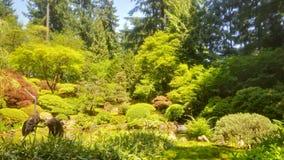 Portland Japanese Garden Summer Royalty Free Stock Photo