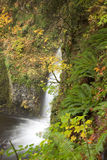 Portland Multnomah Falls Stock Images